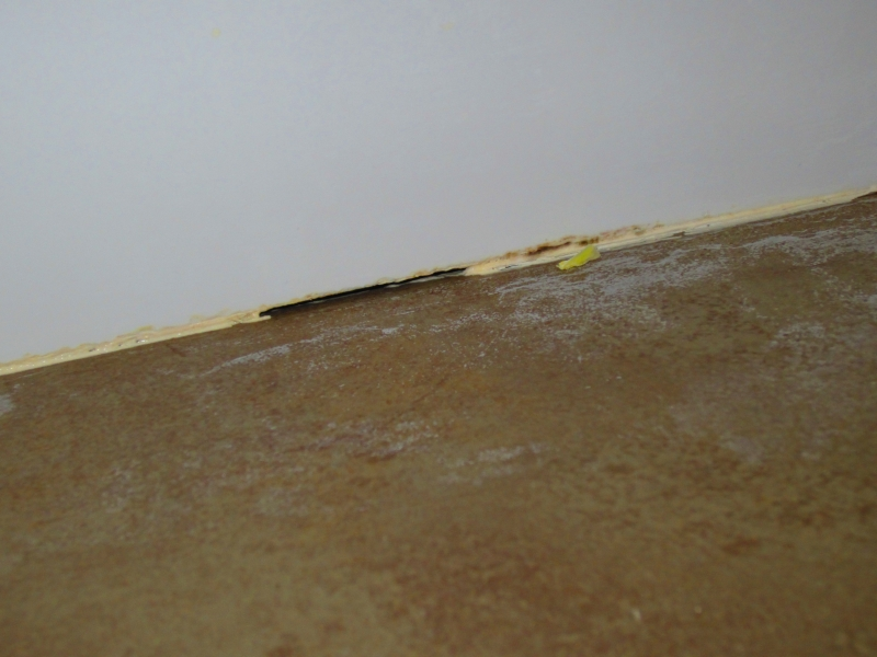 Cracks/separation at the wall and Floor junction