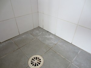 Shower Restoration Before